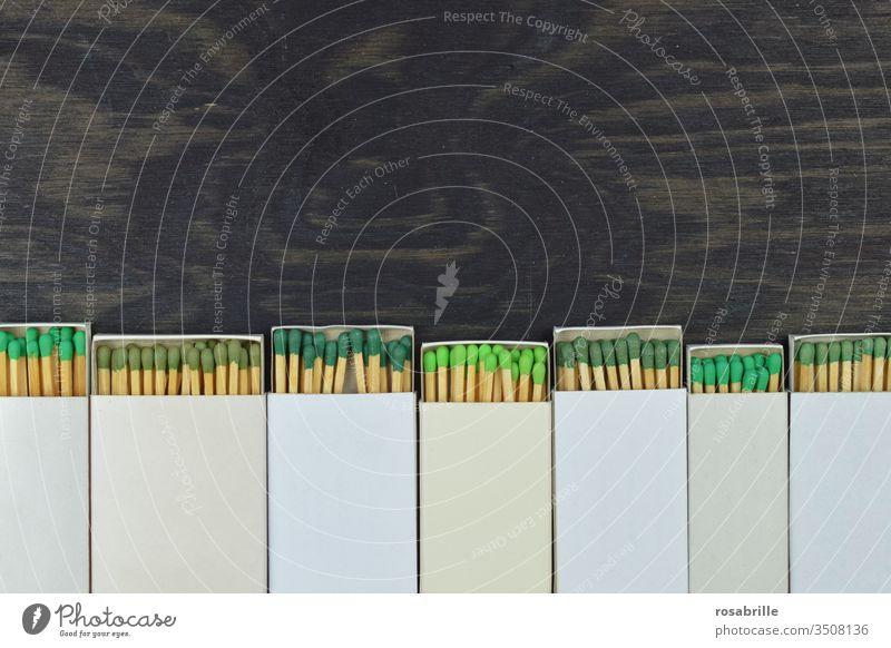 Streichhölzer mit grünen Köpfen schauen aus geöffneten Streichholzschachteln | Farbkombination Kopf anzünden Feuer Sammlung Freifläche farbig weiß gemischt rund