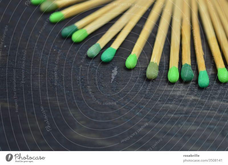 konform | Streichhölzer mit unterschiedlich grünen Köpfen auf schwarzem Holz - Untergrund Streichholz anzünden Feuer Sammlung Muster Freifläche nebeneinander