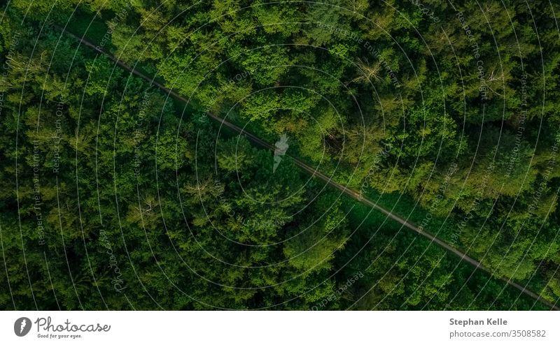 Luftaufnahme einer leeren Strasse im grünen Wald. Drohnenschuss. oben diagonal natürlich Hintergrund Landschaft Weg schön Natur im Freien Straße Sommer reisen
