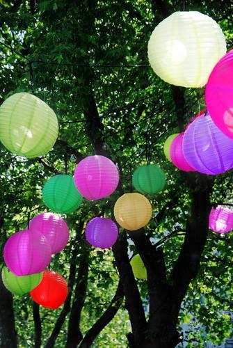 Lampion Baum Beleuchtung Feste & Feiern Lampe Party Garten Geburtstag Häusliches Leben leuchten Fröhlichkeit Dekoration & Verzierung Sommerurlaub Nachtleben