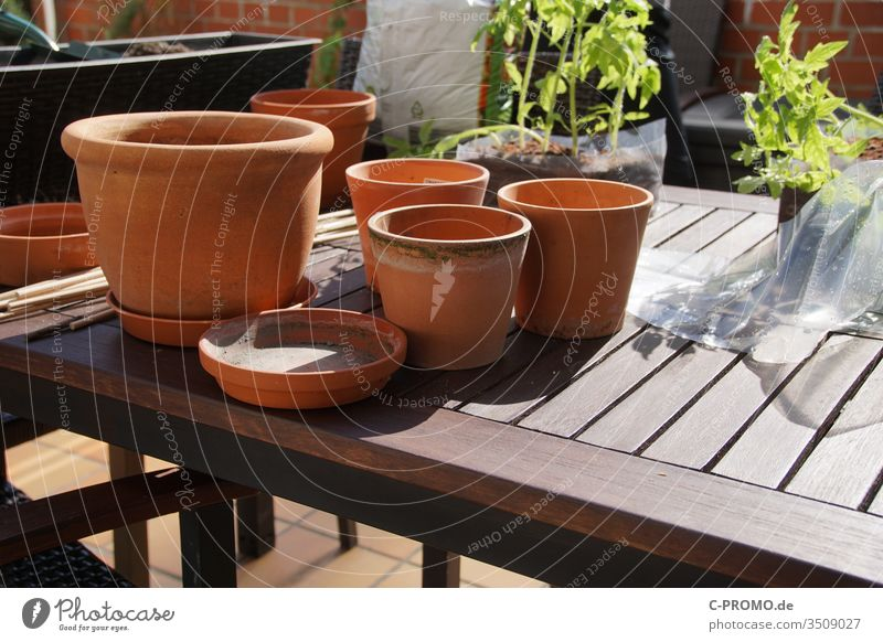 Blumentöpfe umtopfen Pflanzen Balkon terasse Garten Gartenarbeit Tontopf Terrakotta Tisch