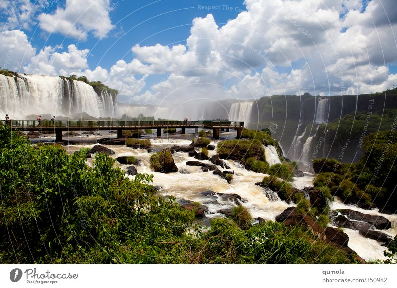Natur grün Wasser Erholung Wolken Umwelt Energie Urelemente Macht exotisch Wasserfall innovativ Brückenpfeiler Iguazu Fälle Iguazu NP