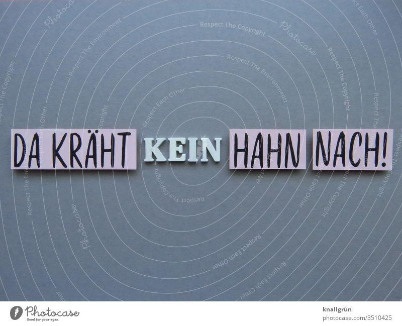 Da kräht kein Hahn nach! Redewendung unwichtig Kommunizieren egal Gefühle uninteressant Schilder & Markierungen Schriftzeichen Buchstaben Wort Satz Typographie