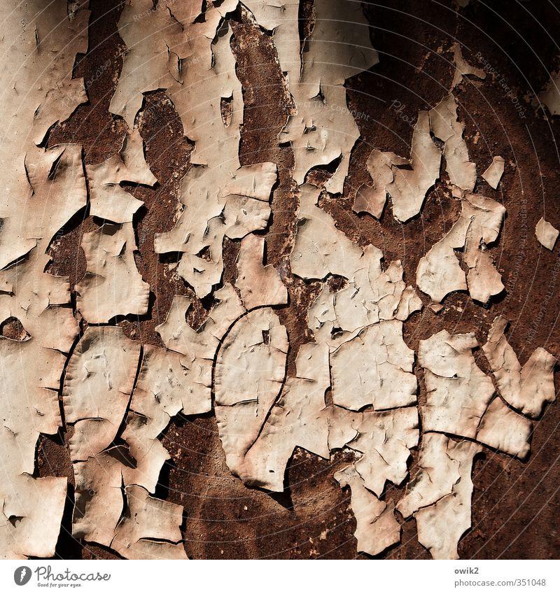 Deko 3 | Rost Metall bizarr chaotisch Desaster Verfall Vergänglichkeit verlieren Farbstoff Farbfoto Gedeckte Farben Außenaufnahme Nahaufnahme Detailaufnahme