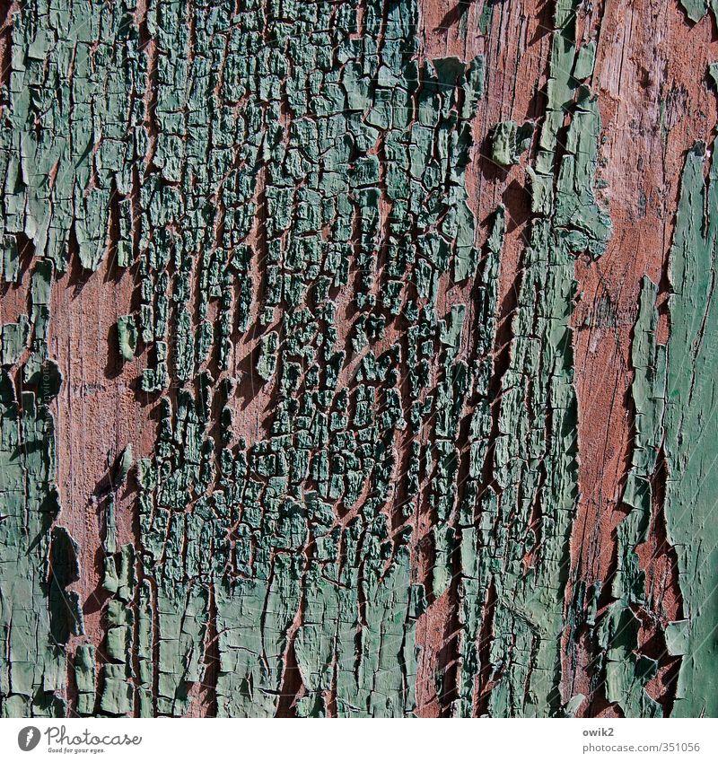 Deko 1 | Spätschicht alt Farbstoff Holz klein rosa Tür kaputt Vergänglichkeit Textfreiraum Spuren Teile u. Stücke nah Verfall türkis Riss trashig