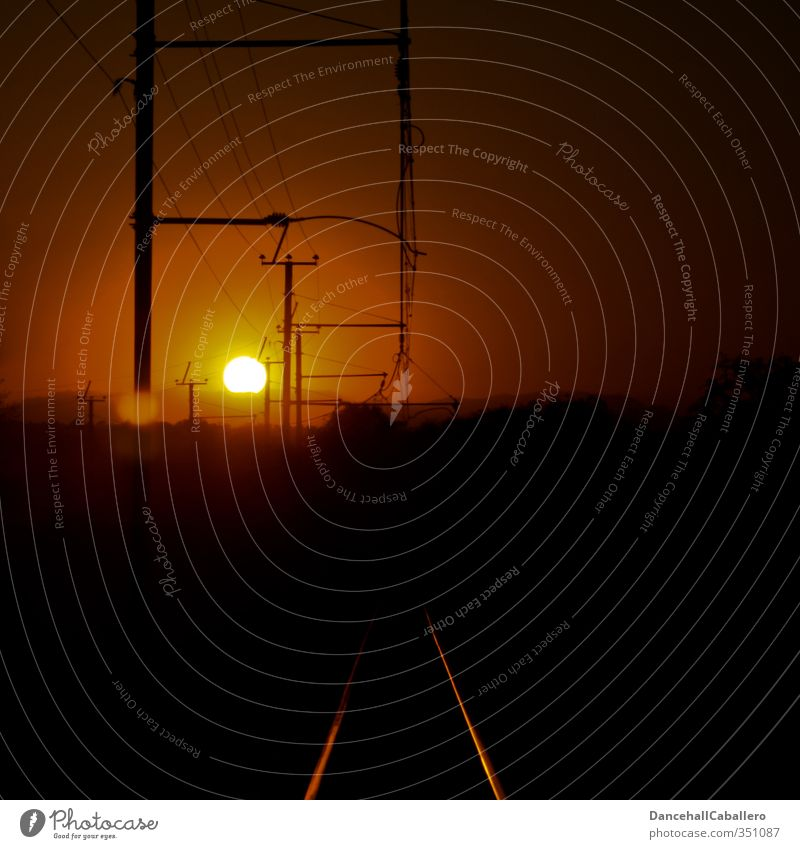 Zugfahrt in die Nacht Verkehr Verkehrsmittel Verkehrswege Personenverkehr Schienenverkehr Eisenbahn Bahnfahren Gleise Schienennetz Oberleitung schön Wärme gelb