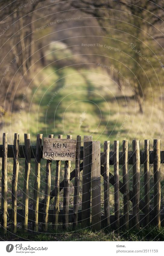 Geschichten vom Zaun (70) draußen natur baum verschlossen gesperrt naturschutzgebiet weg waldweg schild sonnenlicht sicherheit grenze sperre zaun