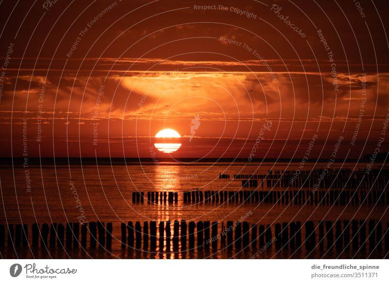 Sonnenaufgang an der Ostsee II Meer Wellenbrecher Himmel Dramatik Wasser Außenaufnahme Wolken Farbfoto Horizont Sonnenuntergang Dämmerung Strand Sommer Küste