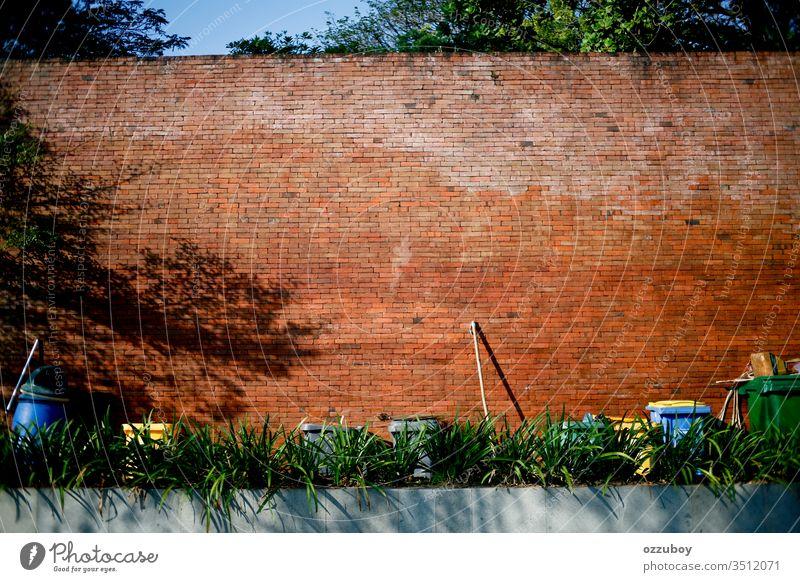 Kopie Raum Ziegelwand Mülleimer Textfreiraum Backsteinwand Wand Besen Umwelt Pflanze Schatten Reinigen im Freien Objektgruppe Tag sonnig nachhaltig