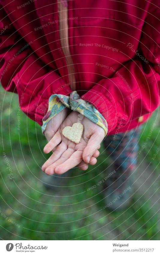 Herz für Muttertag Kind Hand Liebe Erziehung Familie & Verwandtschaft Geschwister Zuneigung Gefühle Fröhlichkeit Kindheit Außenaufnahme Textfreiraum rechts