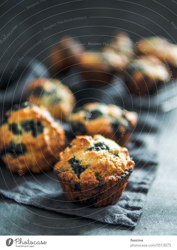 Hausgemachte Blaubeer-Muffins auf dunklem Hintergrund. kalorienarm selbstgemacht Blaubeeren niemand Draufsicht oben vertikal Lebensmittel Dessert Kuchen Snack