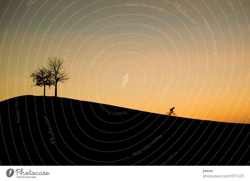 Das Fest ist aus … 1 Mensch Landschaft Himmel Wolkenloser Himmel Sonnenaufgang Sonnenuntergang Sommer Schönes Wetter Baum Hügel Berge u. Gebirge Mount Klotz