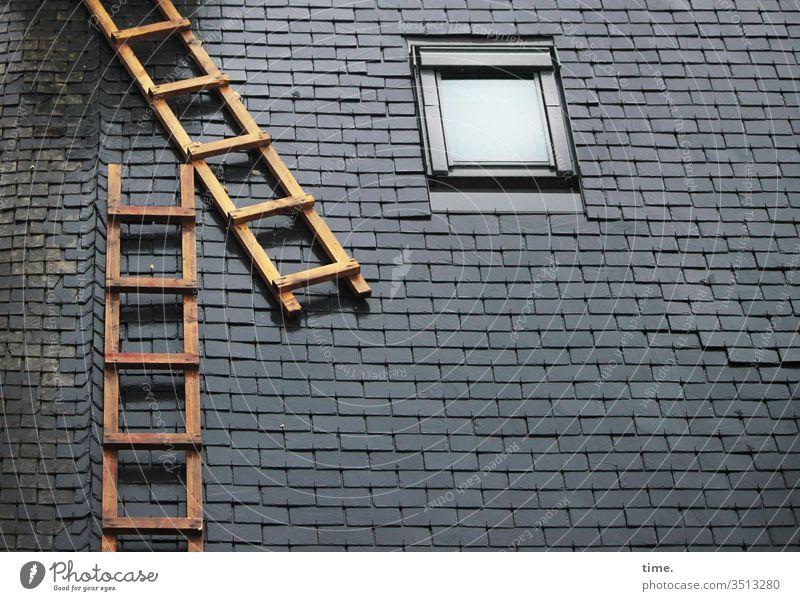 jemandem mal so richtig auf's Dach steigen   wörtlich genommen haus oben leiter außenleiter fenster perspektive ausschnitt konstruktion architektur bauwerk dach