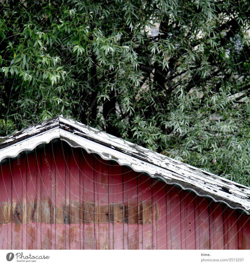 naturnah, courtagefrei, absofort draußen baum verschlossen wald schutz sicherheit grenze sperre dach gebäude rot alt verlassen eindruck trashig winkel holz