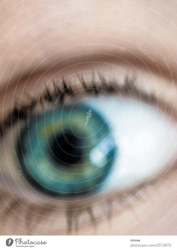 unscharfes Detail eines Auges Wimpern blau grün Blick Blick in die Kamera Detailaufnahme 1 Pupille Gesicht Mensch Nahaufnahme Farbfoto Tag Haut Regenbogenhaut