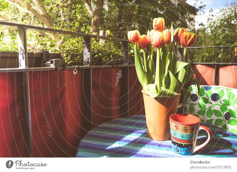 Blumenvase und Kaffeetasse auf dem Balkon Tulpen Sonne bunt Tisch Tischdecke grün Frühling Menschenleer Farbfoto Blumenstrauß