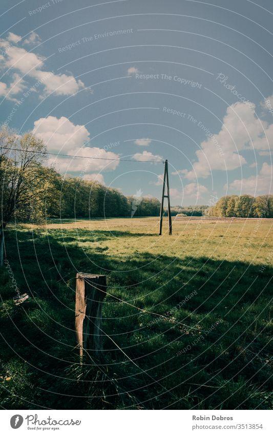 Telegrafenmast auf einem Feld Natur Gras Wiese Sommer Umwelt Mast Zaun Sonne Sonnenlicht Himmel Außenaufnahme Farbfoto Landschaft grün Menschenleer Wolken