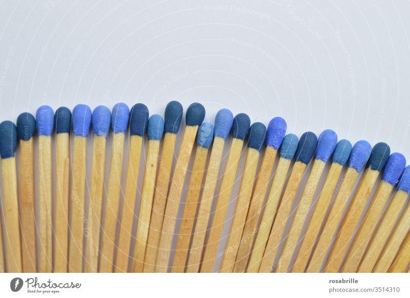 konform | Streichhölzer mit unterschiedlich blauen Köpfen auf weißem Untergrund Streichholz anzünden Feuer Sammlung Muster Freifläche nebeneinander entflammen