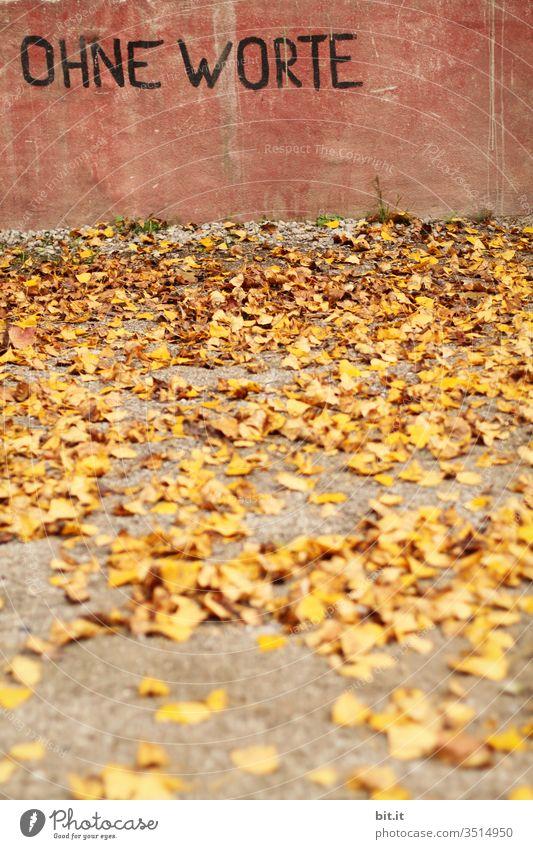 Buchstaben, Text, Schriftzug: Ohne Worte, stehen auf einer rosa Wand aus Beton geschrieben, im Vordergrund liegt gelbes Laub im Herbst, auf dem Boden.