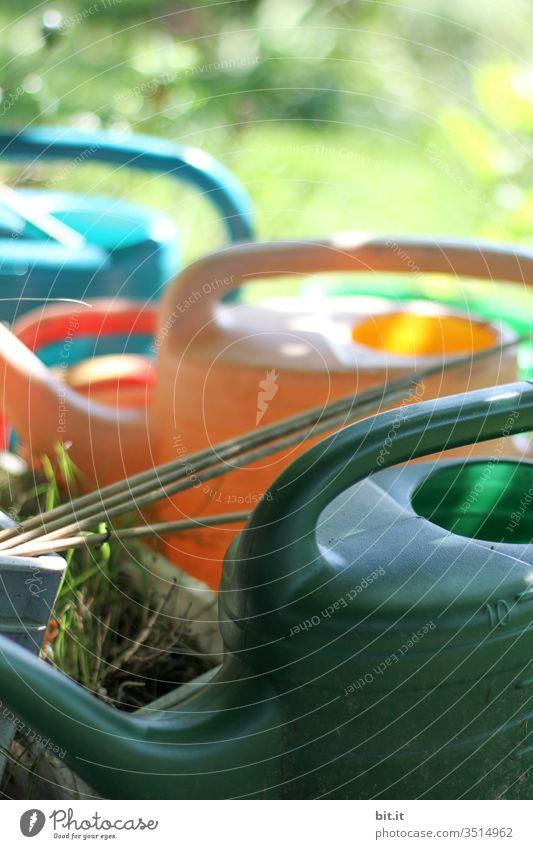 Viele bunte Gießkannen aus Plastik, stehen dekorativ und griffbereit, bereit zum Gießen, draussen in der grünen Wiese zuhause im Garten, im Frühling, Sommer. Beleuchtet vom Sonnenlicht, des schönen Wetters, ist der Ausschnitt schön und dekorativ.