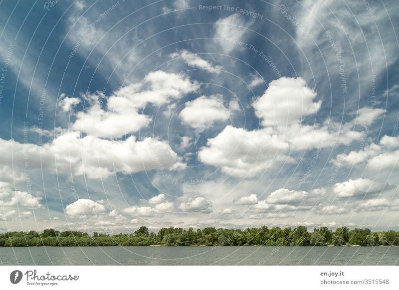 Seeufer mit Wald unter Himmel mit Wolken Ufer Schäfchenwolken Weitwinkel schönes Wetter Landschaft Natur Urlaub Erholung Sommer Wasser Umwelt Freiheit ruhig