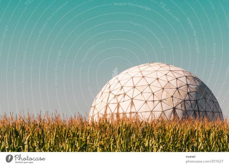 Fußball in Brobdingnag Pflanze Landschaft Sport Architektur Gebäude Feld Schönes Wetter Luftverkehr Zukunft Telekommunikation Technik & Technologie rund Ball