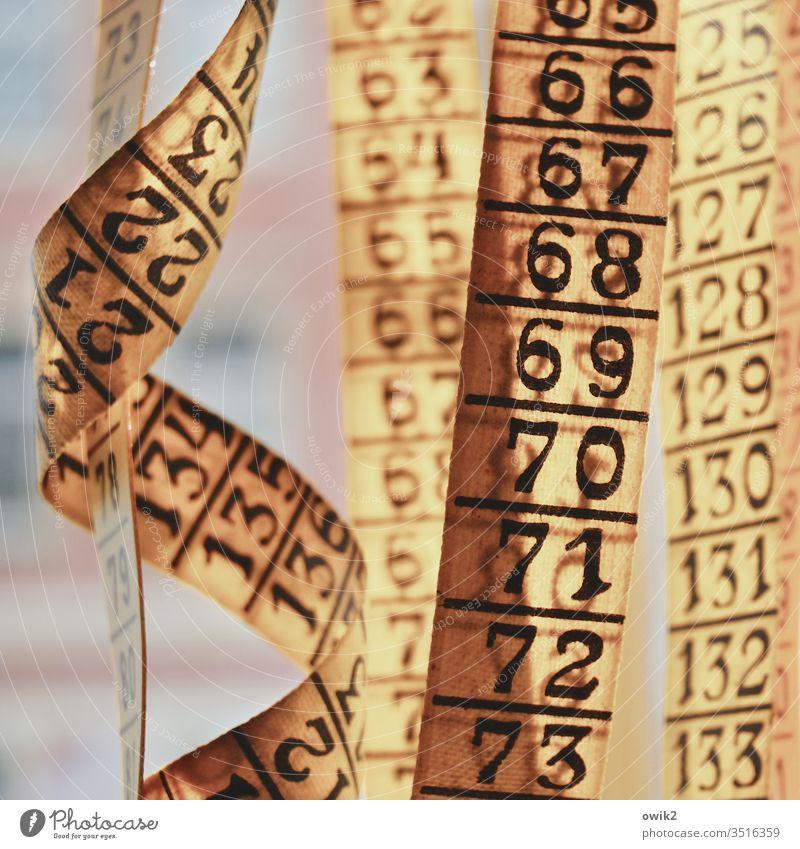 Abschnitt Maßband Zahlen Skala Reihenfolge Ziffern & Zahlen Menschenleer Nahaufnahme Farbfoto Genauigkeit Innenaufnahme gelb messen Präzision Tag Handwerk