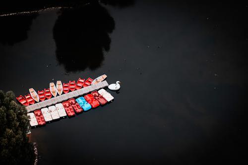 Leere Boote und ein Schwan Textfreiraum Mitte Textfreiraum oben Schatten Licht Tag Textfreiraum rechts Menschenleer Luftaufnahme Gedeckte Farben Farbfoto