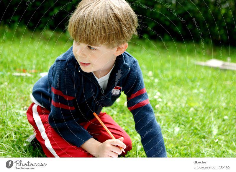 Sammy2 Kind Junge Wiese Spielen blond