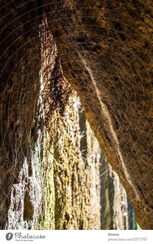 Gegensätze | drinnen - draußen Höhle Spalt Felsspalt Durchschlupf eng Schlucht Engstelle braun geheimnisvoll spitz Naturgewalt hellbraun Sonnenlicht