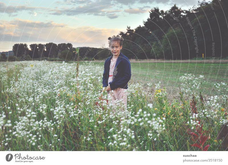 mädchen steht in einer blumenwiese in der natur Kind Mädchen Wiese Natur Blumenwiese Feld Acker auf dem Land Landschaft Sommer Frühling Gras Außenaufnahme