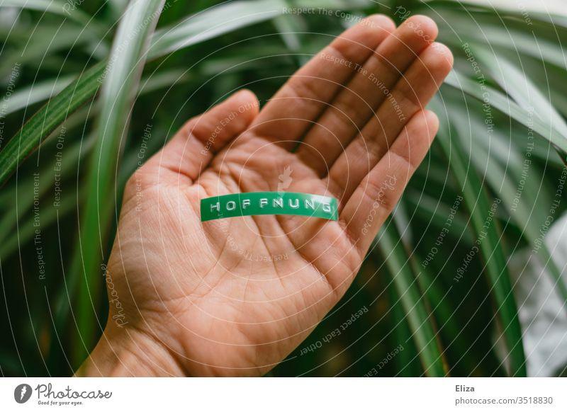 Eine Person hält ein grünes Schild auf dem Hoffnung steht in der Hand Klima Naturschutz halten Wort Text Buchstaben Schrift Etikett Umweltschutz Pflanze