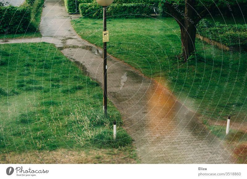 Ein Weg zwischen grünen Wiesen mit Pfützen vom Regen und Laternenpfahl Wohnanlage nass Lightleak Baum Ziel Pfad Außenaufnahme Wege & Pfade Natur Menschenleer
