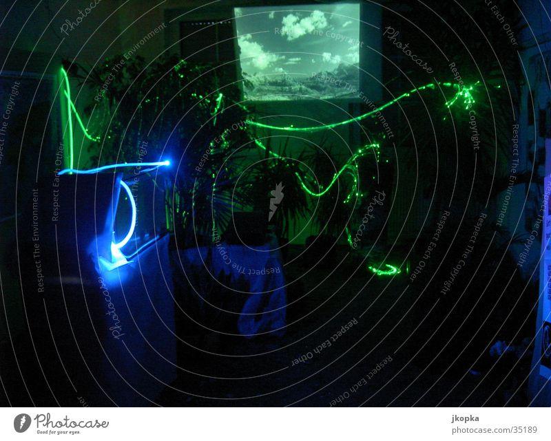 Schöpfung im Dunkeln Natur dunkel Leben Raum führen Surrealismus Neonlicht Ausstellung