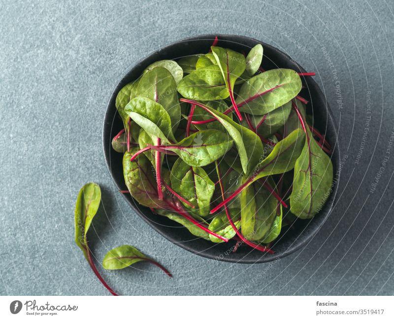 Frischer Salat aus grünen Mangoldblättern oder Mangold Rübe Blätter Salatblätter Hintergrund Salatbeilage Draufsicht Lebensmittel frisch organisch Pflanze