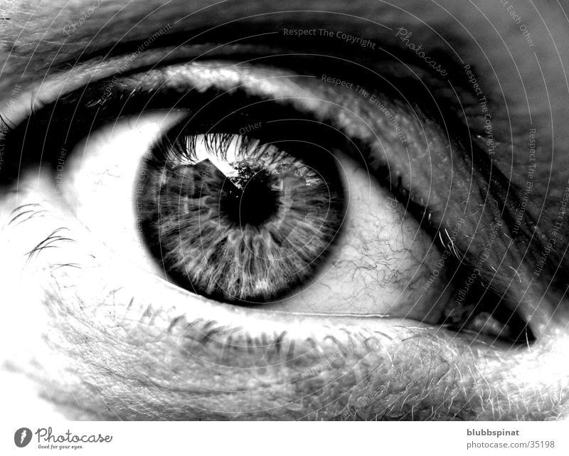 Anjas Eye Pupille Frau Auge Detailaufnahme Makroaufnahme Schwarzweißfoto Regenbogenhaut Blick in die Kamera Wimpern Frauenaugen