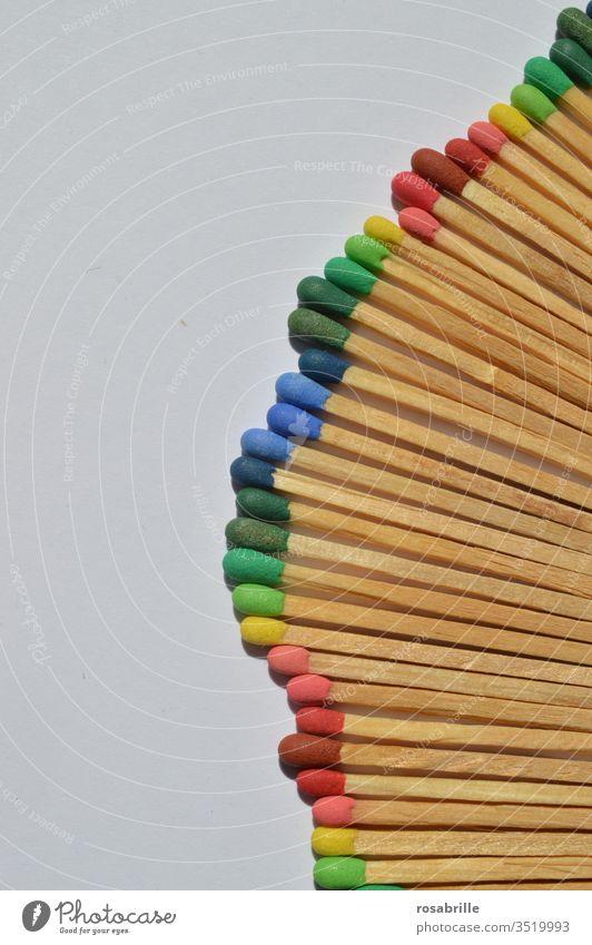 Streichhölzer mit verschieden farbigen Köpfen in Reihe gelegt auf weißem Hintergrund | Farbkombination Streichholz anzünden Feuer Sammlung Muster Freifläche