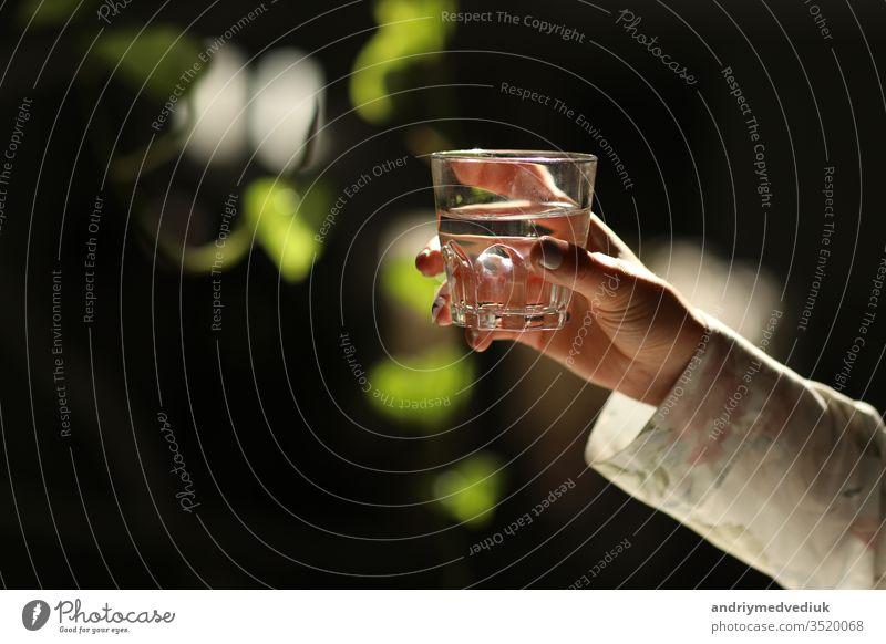 Frauenhände isoliert, ein Glas Wasser auf einem dunklen Hintergrund mit grünen Blättern haltend. die Sonnenstrahlen fallen auf das Glas. gesunder Morgen trinken