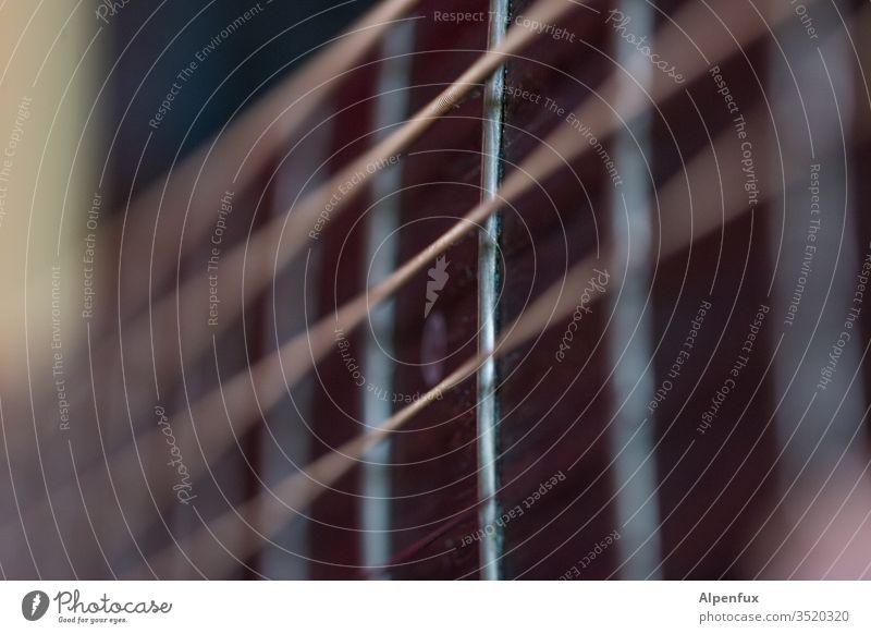 Dreiklang | verzerrt Gitarrensaite Musik Musikinstrument Detailaufnahme Nahaufnahme Saite Klang akustisch musizieren Holz Gitarrenhals Saiteninstrumente