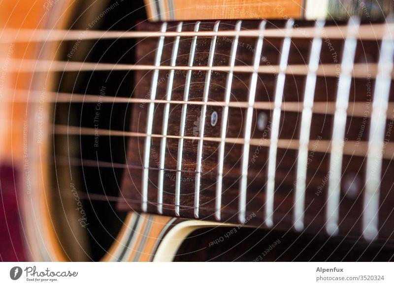 Gerät für | Dreiklang Gitarre Musik Saite Musikinstrument Makroaufnahme Saiteninstrumente Nahaufnahme akustisch Klang musizieren Schwache Tiefenschärfe
