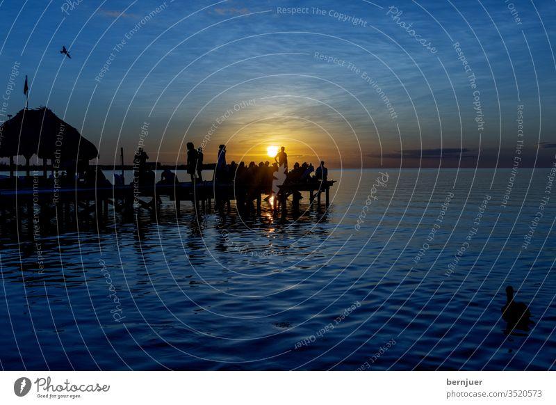 Menschen auf einem Steg bei Sonnenuntergang belize caulker caye tropisch Party Spaß Reisen Strand im Freien Sonnenlicht Männer Freude Glück Freiheit Sommer Meer