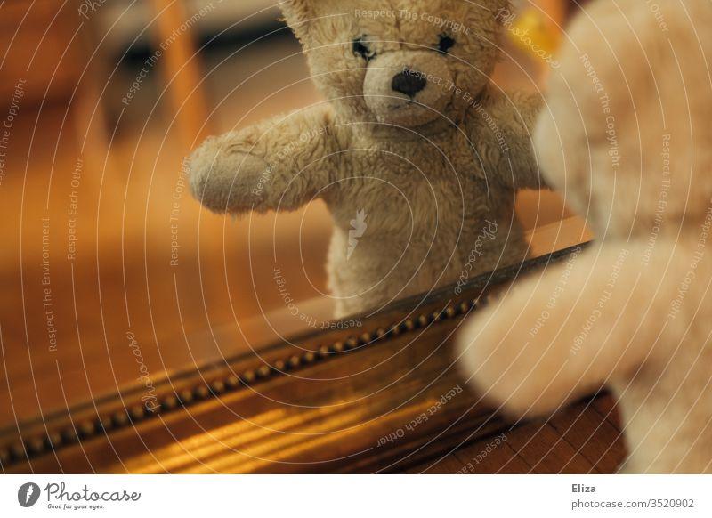 Ein Teddybär der sein Spiegelbild im Spiegel betrachtet Kindheit Boden Spielzeug Kuscheltier achtlos Spielen Bär braun Einsamkeit alleine plüsch verloren einsam