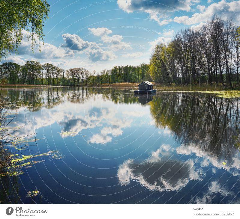 Wasserstand See Seeufer Himmel Wolken Horizont Hausboot Wasseroberfläche Spiegelbild Reflexion & Spiegelung Bäume Natur Landschaft Menschenleer Außenaufnahme