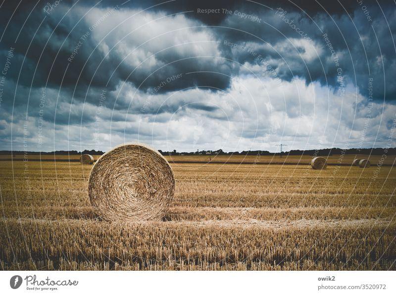 Aufgerollt Feld Landwirtschaft abgeerntet Stoppelfeld Strohballen Rolle aufgerollt Ernte Himmel Wolken dramatisch Landschaft Getreide Außenaufnahme Herbst