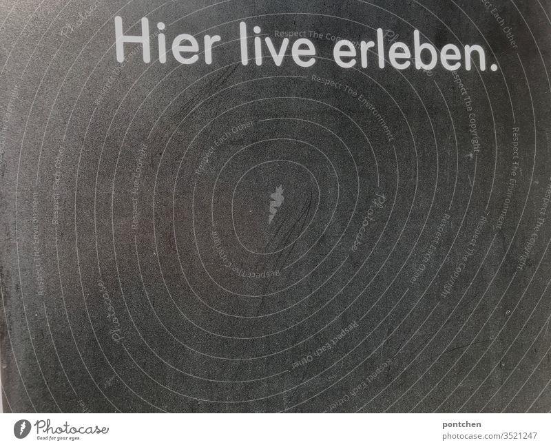"""Werbung Aufschrift """"hier live erleben"""" auf grauem Hintergrund Tafel. Ankündigung ankündigung Wörter veranstaltung text sport kneipe weiß aufdruck werbung"""