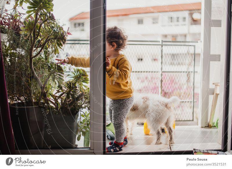 Kind und Hund auf dem Balkon Einsperrung Quarantäne Quarantänezeit sars covid-19 Coronavirus Haustier Zusammensein Zusammengehörigkeitsgefühl Schutz