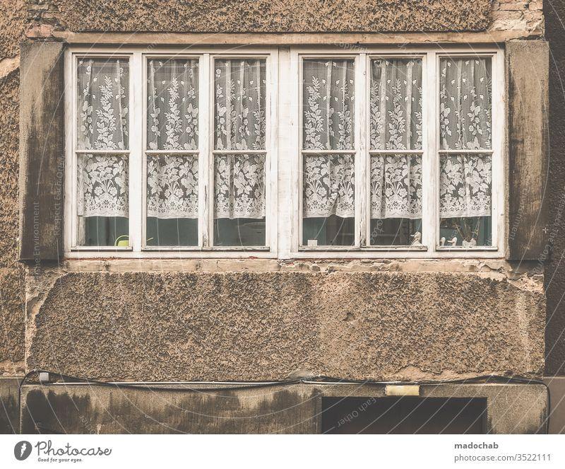 Trautes Heim mit Gardinen Fenster Spießer spießig Leben Wohnen Zuhause kaputt dreckig Verfall urban trashig Menschenleer alt Farbfoto Vergänglichkeit Ruine