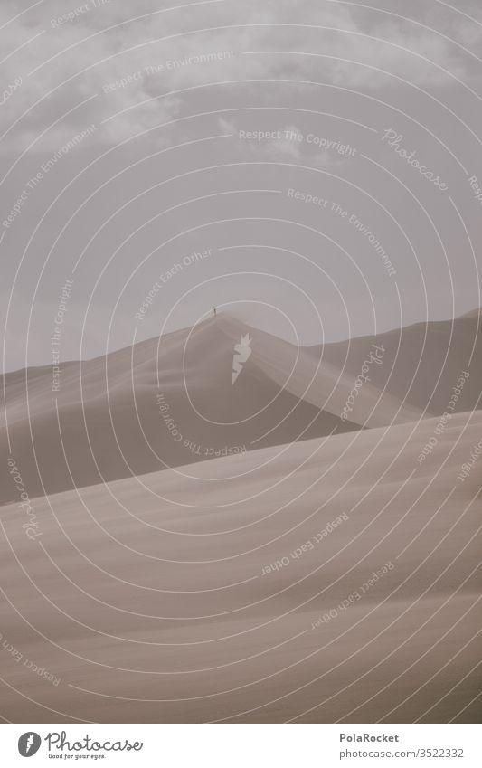#AS# Te Paki II Sand Sandbank Strand formen formenspiel Strandleben struktur dezent Urlaubsfoto Urlaubsstimmung Sandstrand Außenaufnahme