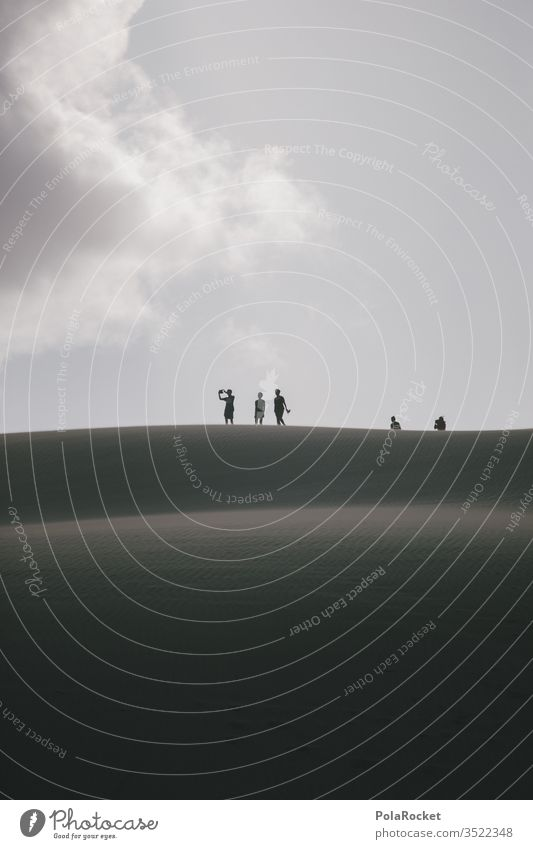 #As# halt es fest Neuseeland Neuseeland Landschaft Tourismus reisen Reisefotografie Reisender reiseziel Düne Dünen dünenlandschaft Dünenkamm entdecken