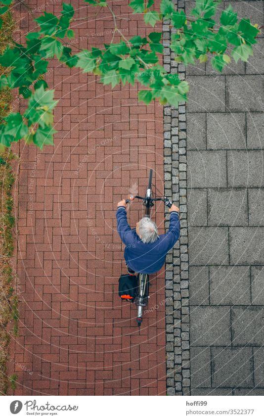 Fahrradfahrer von oben mit frischem frühlingshaftem Grün Fahrradfahren Vogelperspektive Radweg Mann Straße Aktion Erwachsene Wege & Pfade Gesundheit
